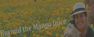 Beyond and The Mango Juice
